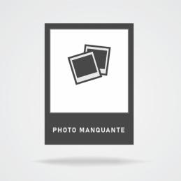 Pandoro classique 750g aries