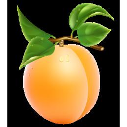 Abricot a confiture la...