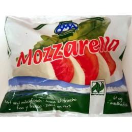 Mozzarella 100gr oma