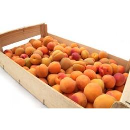 Abricot confiture caisse 5kg