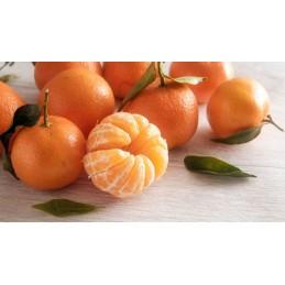 Mandarine france