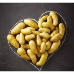 Pommes de terre ratte au kilo