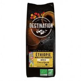 Cafe moka ethiopie destination